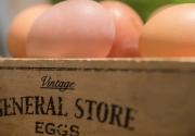 Breakfast-Eggs